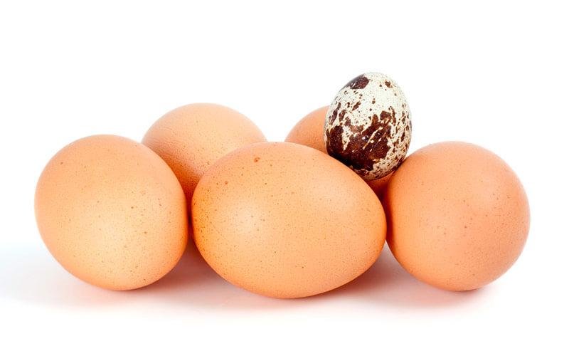 Фото Как жарить яйца